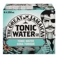 Soda tonique The Great Jamaican 6x250 mL